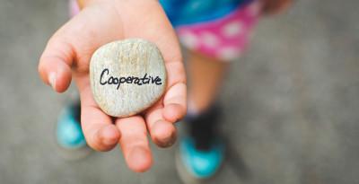 Le cooperative sociali: Organizzazione e gestione
