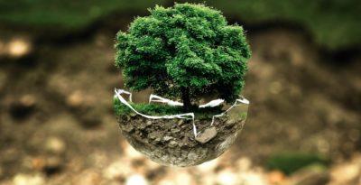 I.S.E.A. - Imprese al Servizio dell'Ecologia e dell'Ambiente