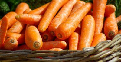 i processi produttivi agricoli a filiera corta