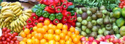 Corso di formazione e di aggiornamento del personale alimentarista (Ex Libretto di Idoneità Sanitaria)